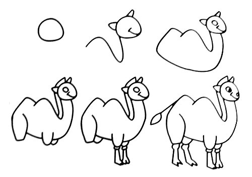 Let's draw a large camel.